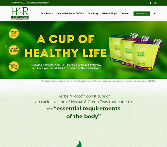 Website Design Company Faridabad